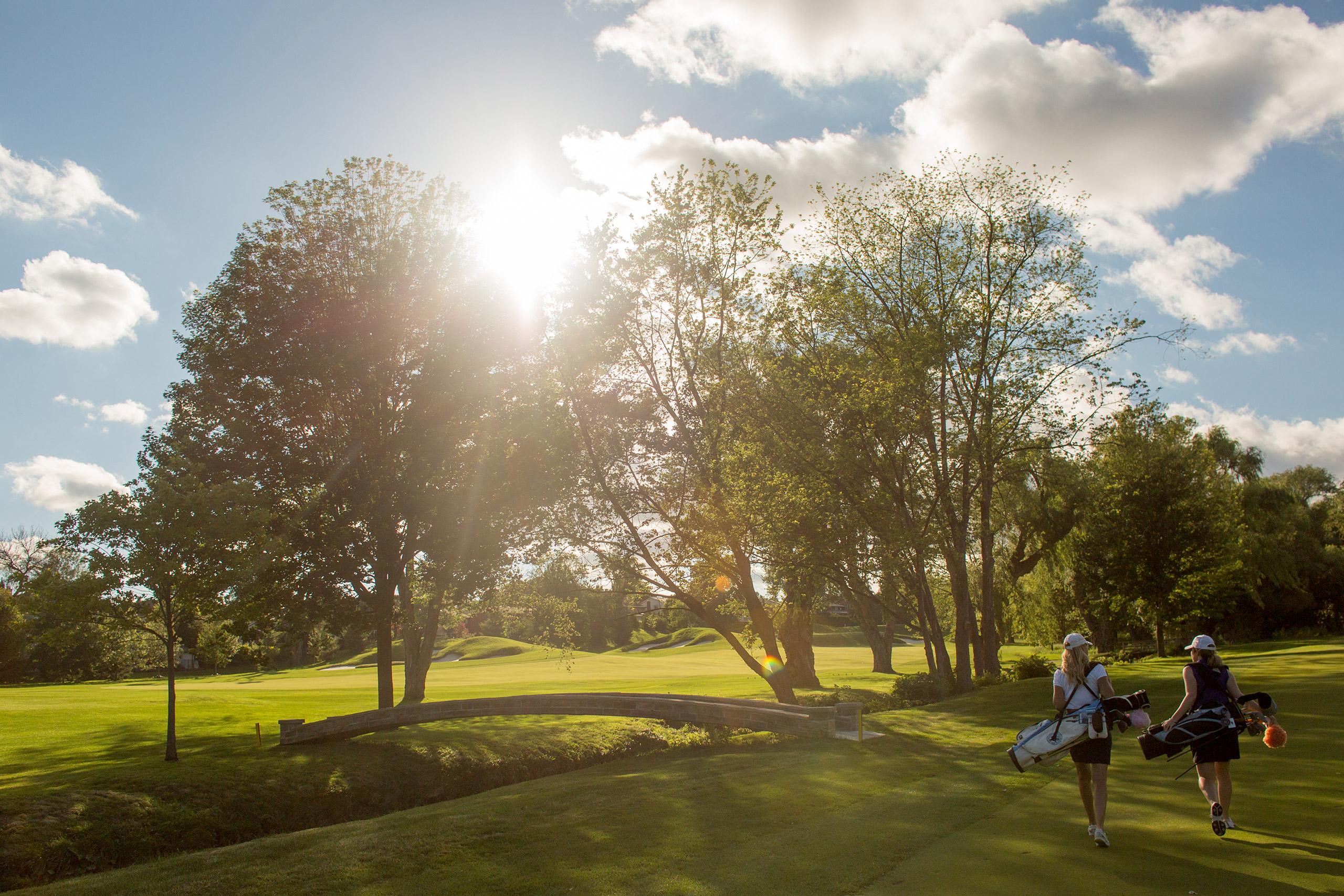 golf-bg-25